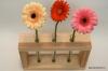 Dekoratīva koka vāze (3 ziediem)