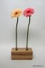 Dekoratīva koka vāze (2 ziediem)